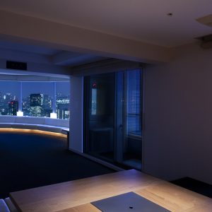 Tokyo Twin Parks Penthouse